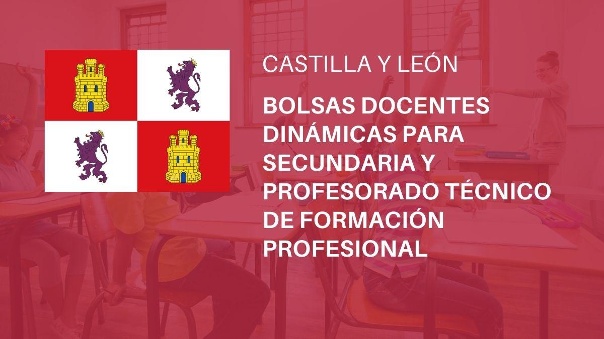 Convocatoria bolsas docentes dinámicas para las especialidades de los Cuerpos de Enseñanza Secundaria y Profesorado Técnico de Formación Profesional en centros docentes públicos de Castilla y León